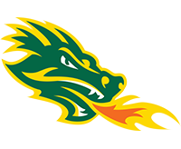 Boca Raton Lightning Logo